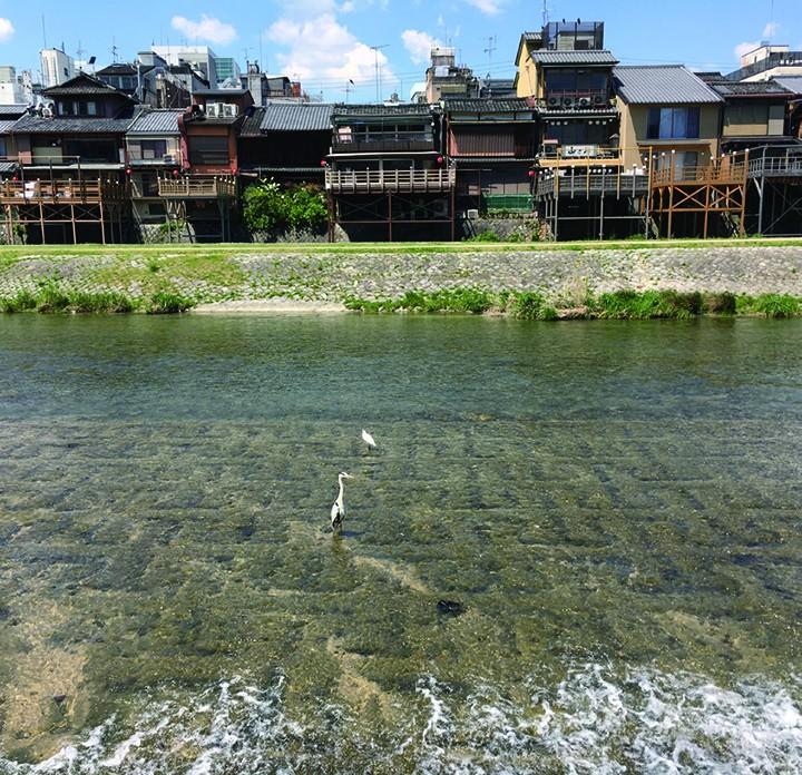 水丰物美的鸭川河,河岸上鳞次栉比的纳凉床是京都最美的夏季风物诗