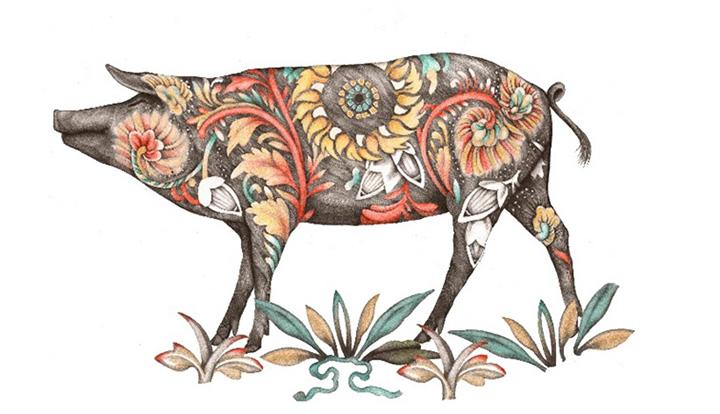 5J猪年艺术形象首发,缤纷彩猪开启品牌更绚烂的传奇时光